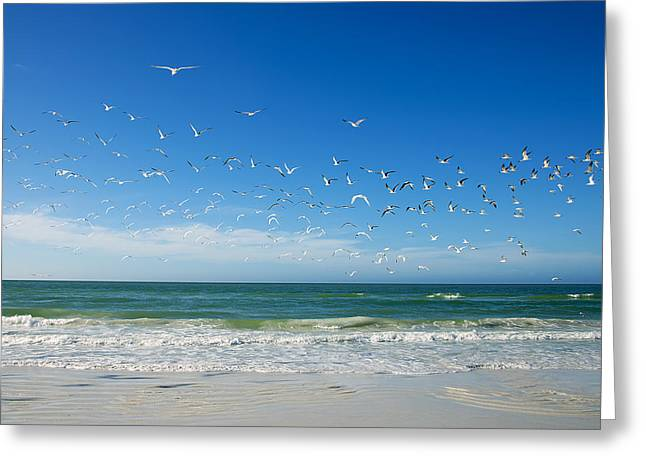 Siesta Key Greeting Card