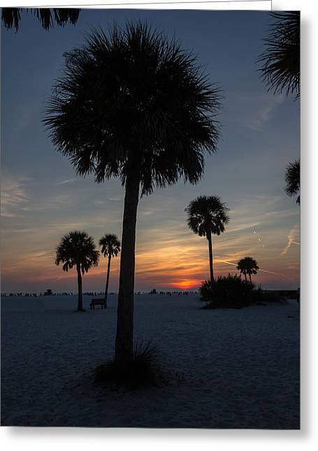 Greeting Card featuring the photograph Siesta Sillhouette by Paul Schultz