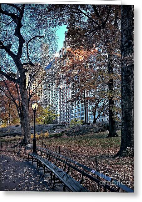Greeting Card featuring the photograph Sights In New York City - Central Park by Walt Foegelle