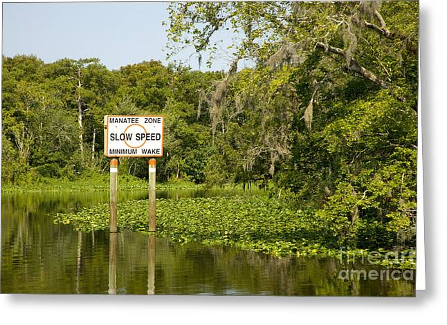 Sign On The St. Johns River Greeting Card