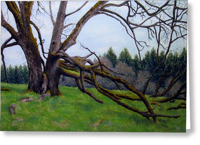 Signature Oak Greeting Card by Carl Capps