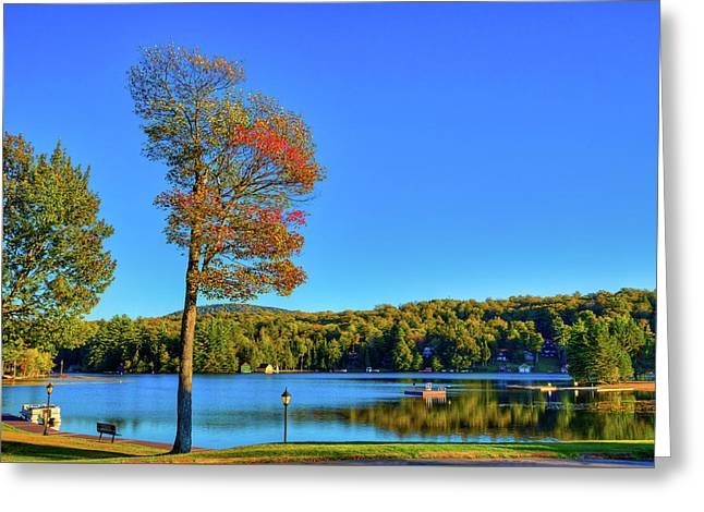 Signs Of Autumn On Old Forge Pond Greeting Card by David Patterson