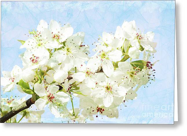 Signs Of Spring Greeting Card by Inspirational Photo Creations Audrey Woods