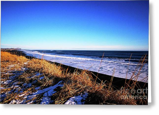 Silence At Black Sand Beach Greeting Card