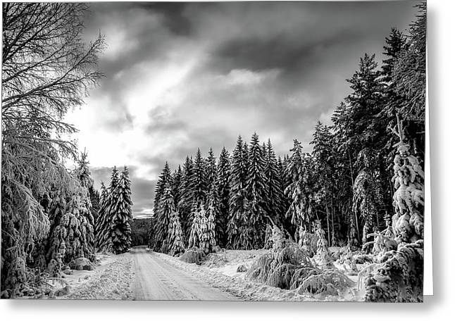 Silence Of A Winter Day Greeting Card
