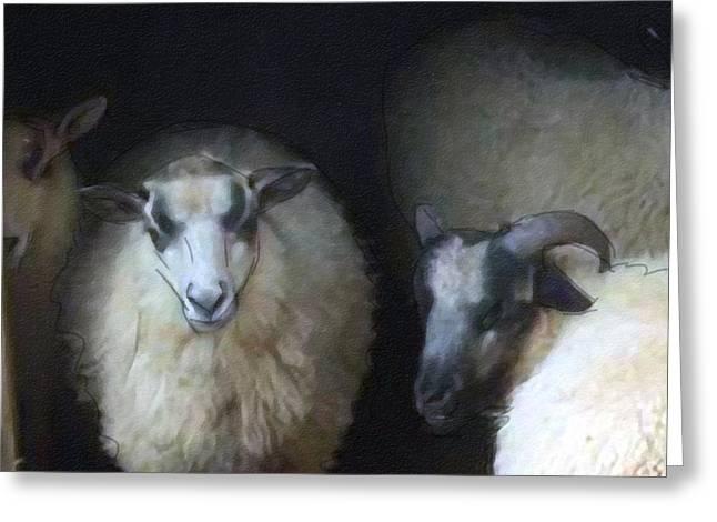 Silence Of The Sheep Greeting Card