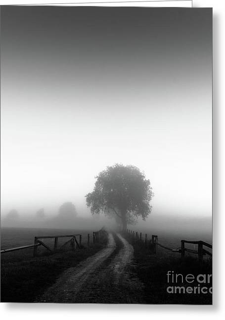 Greeting Card featuring the photograph  Silent Morning  by Franziskus Pfleghart