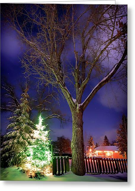 Greeting Card featuring the photograph Silent Night by Cat Connor