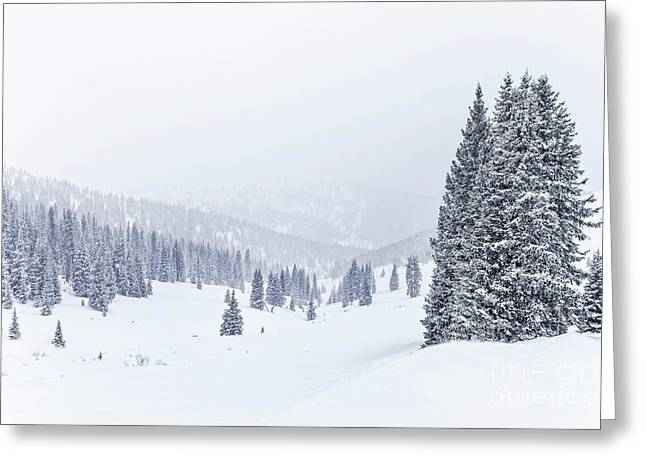 Silent Snow Greeting Card by Evelina Kremsdorf