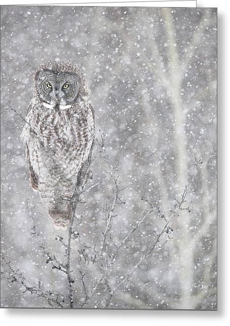 Greeting Card featuring the photograph Silent Snowfall Portrait by Everet Regal