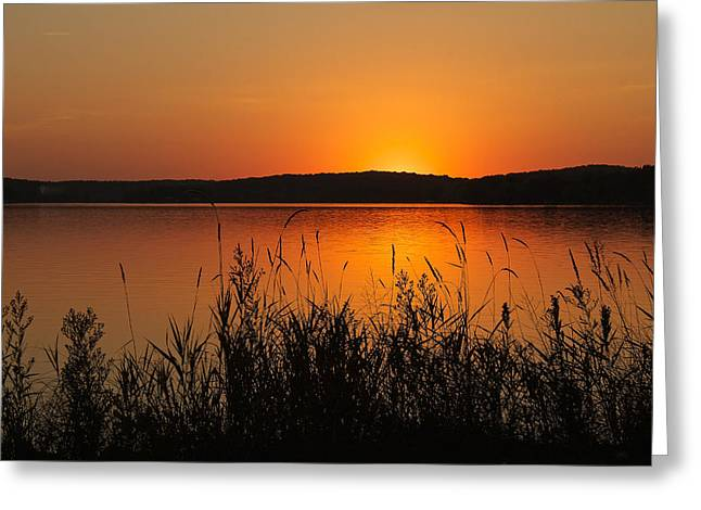 Silent Sunset Greeting Card by Penny Meyers