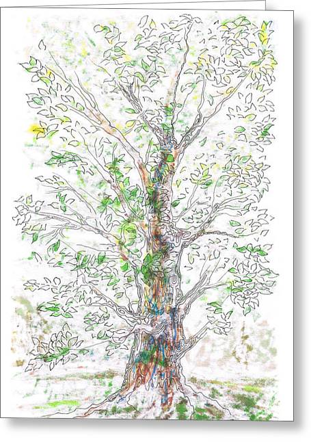 Silent Witness Greeting Card by Regina Valluzzi