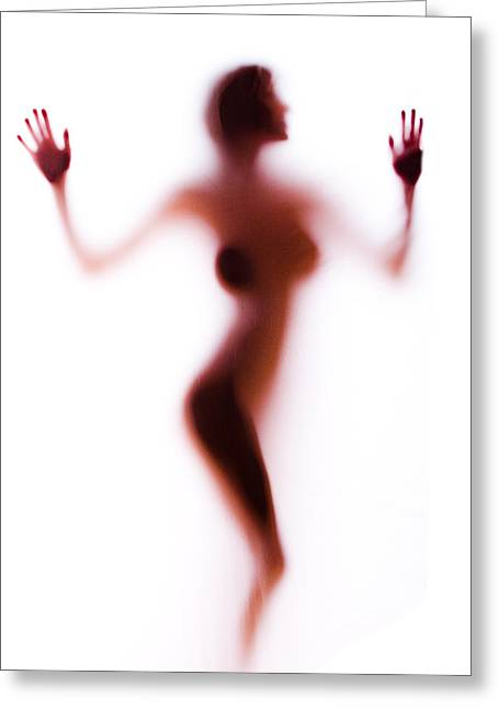Silhouette 14 Greeting Card by Michael Fryd