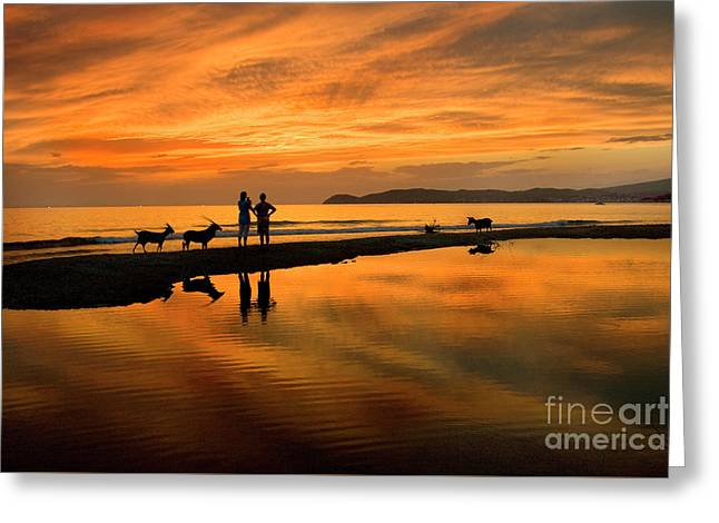 Silhouette And Amazing Sunset In Thassos Greeting Card