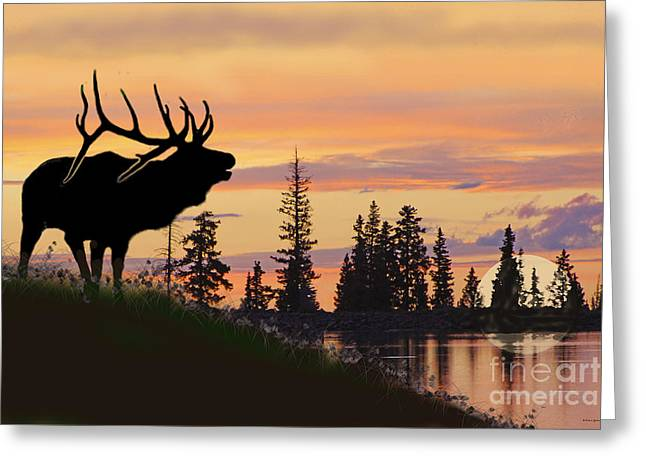 Silhouette Elk Lake Sunset Reflections Greeting Card
