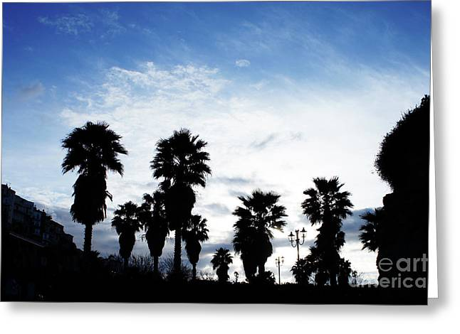 Silhouette In Tropea Greeting Card