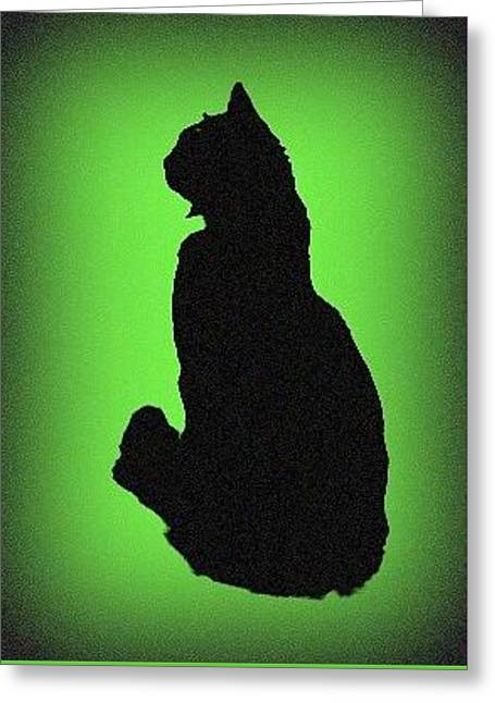 Greeting Card featuring the photograph Silhouette by Karen Shackles