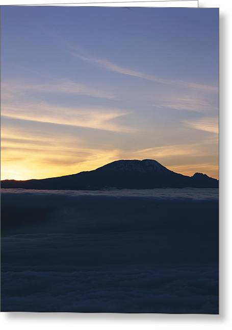 Silhouette Of Mount Kilimanjaro Greeting Card by David Pluth