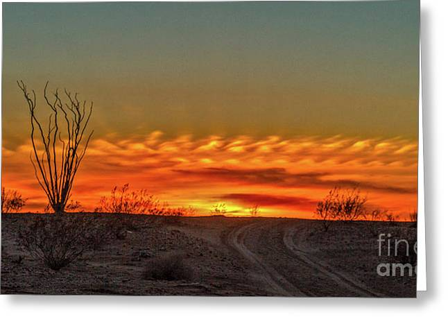 Silhouette Sunset Greeting Card by Robert Bales