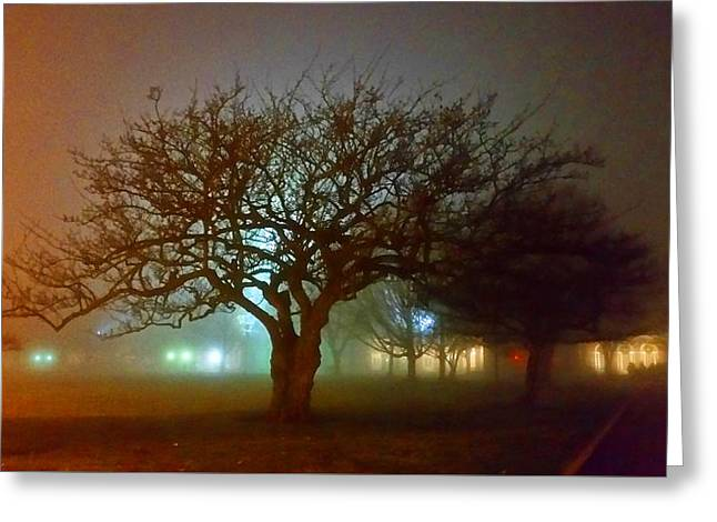 Silhouette Tree Greeting Card