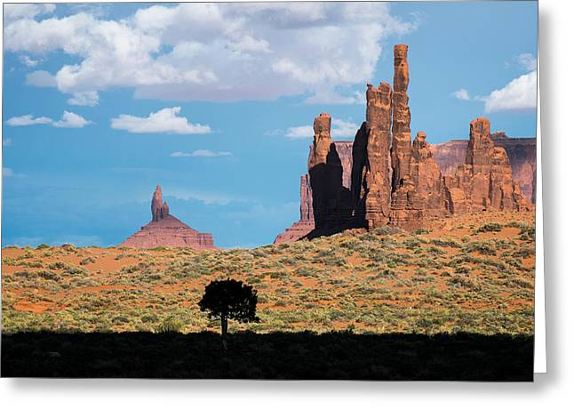 Silhouetted Tree At Monument Valley Greeting Card