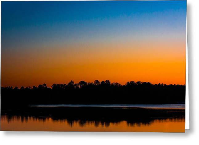Silhouetted Trees At Sunset Greeting Card by Shelby  Young