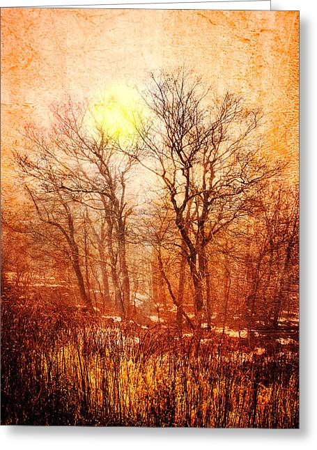 Silhouettes At Sunset Greeting Card by Debra and Dave Vanderlaan