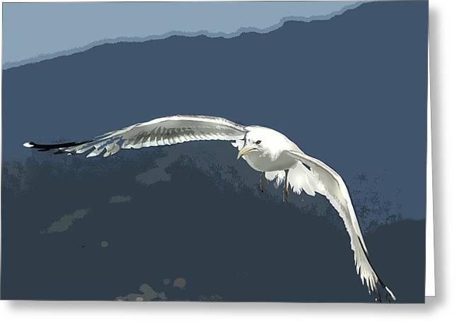 Silk Screen Posterized Seagull Greeting Card by Elaine Plesser