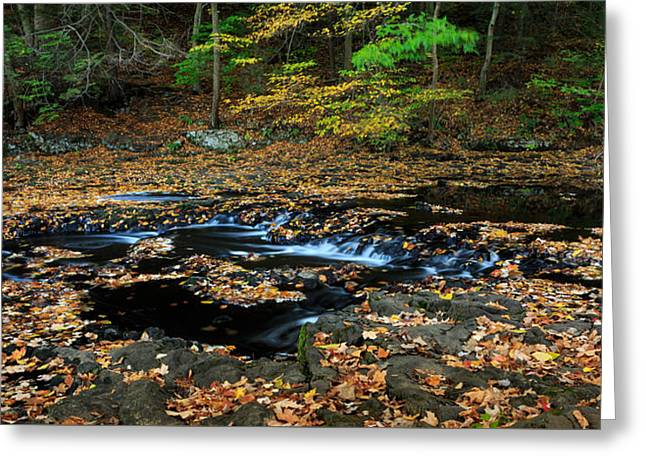 Silky New England Stream In Autum Greeting Card