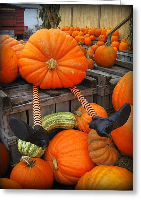 Silly Pumpkin Greeting Card by Suzanne DeGeorge