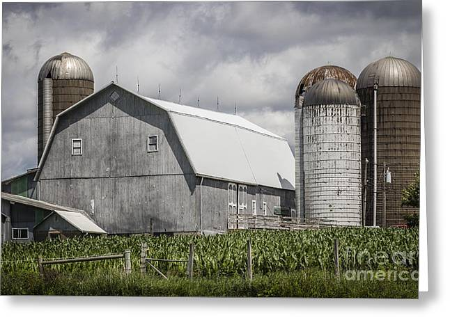 Silos Standing Greeting Card