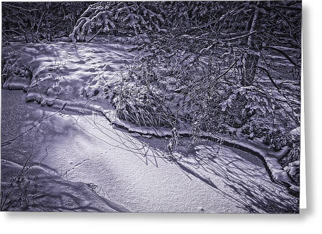 Silver Brook In Winter Greeting Card