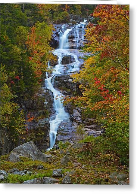 Silver Cascade Greeting Card
