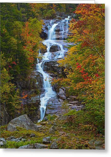 Silver Cascade Greeting Card