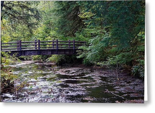 Silver Creek Falls #38 Greeting Card