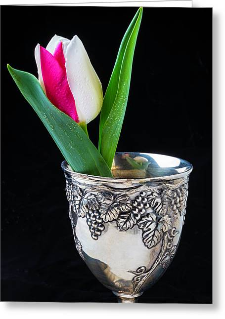 Silver Cup And Tulip Greeting Card by Garry Gay