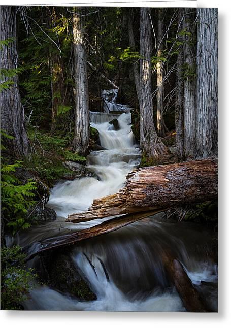 Silver Falls Greeting Card