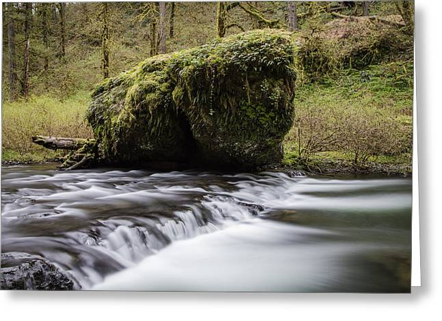Silver Falls Rock And Rapids  Greeting Card
