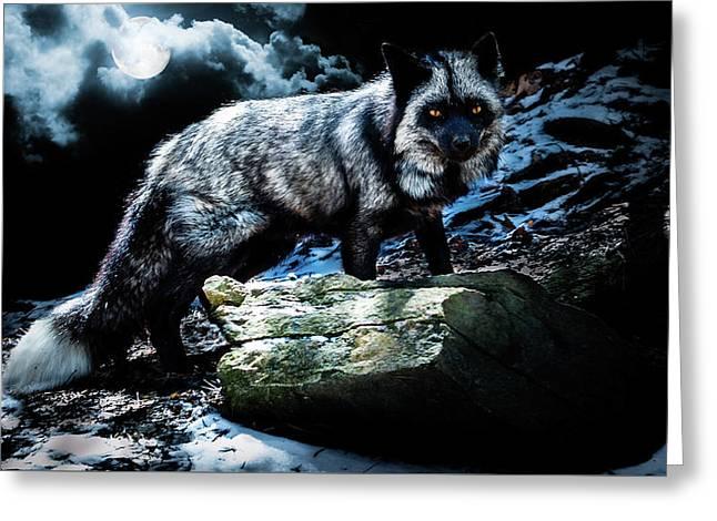 Silver Fox In Moonlight. Greeting Card