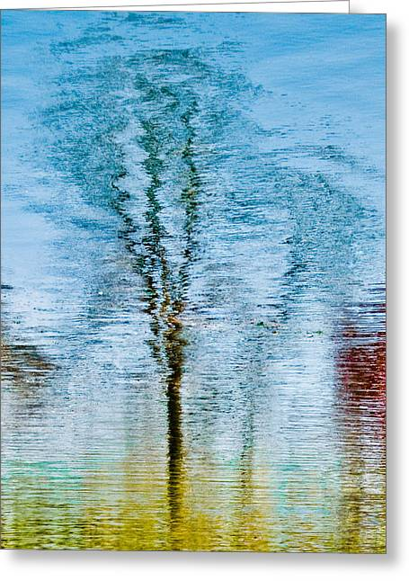 Silver Lake Tree Reflection Greeting Card