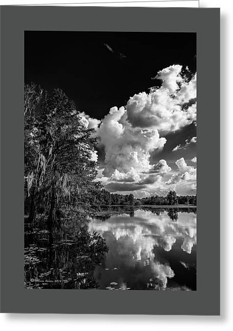 Silver Linings Greeting Card by Marvin Spates