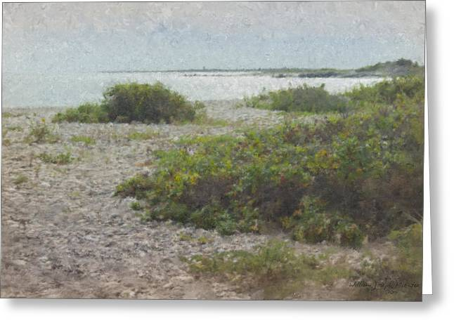 Silver Shoreline Westport Ma Greeting Card