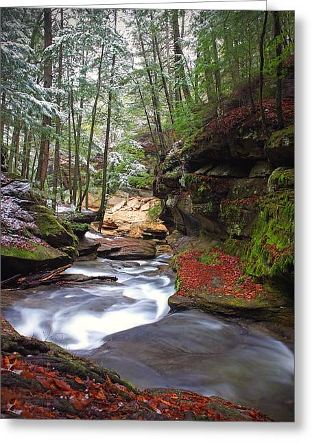 Silver Singing River Greeting Card by Jaki Miller