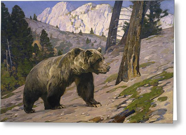 Silver Tip Grizzly Bear - Rocky Mountains, Alberta Greeting Card