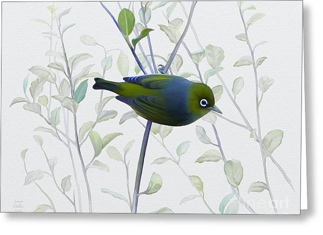 Silvereye Greeting Card