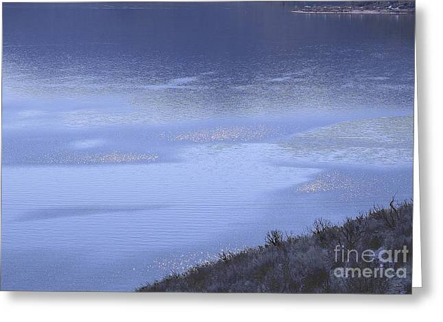 Silverwood Lake In Blue Overcast Greeting Card