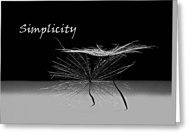 Simplicity Pods Greeting Card by Barbara St Jean