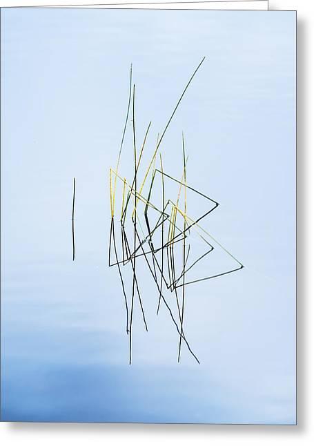 Simplicity Greeting Card by Vishwanath Bhat