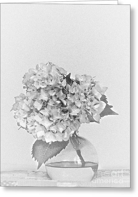 Simplistic Living In Black And White Greeting Card