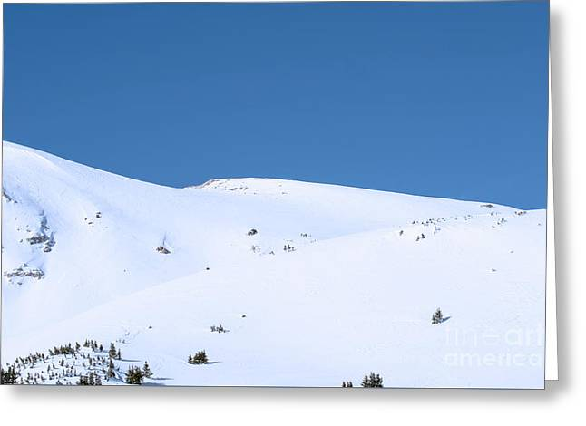 Greeting Card featuring the photograph Simply Winter by Juli Scalzi